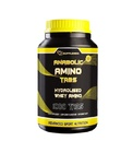 Supplemax Anabolic Amino (1000 таб)